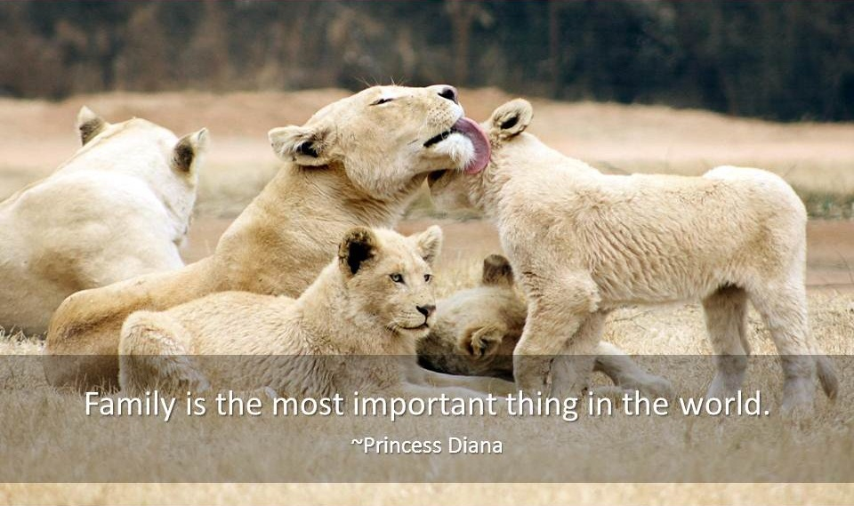 Family Quotes Famous Quotes Quotations About Family Inspiration Famous Quotes About Family
