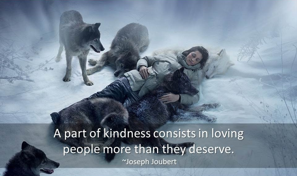 Kindness Quotes   Famous Quotes & Quotations about Kindness