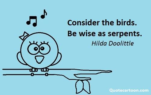 Read more Bird Quotes.